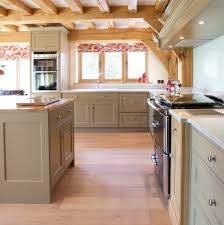 Farrow And Ball Kitchen Farrow And Ball Savage Ground Kitchen Traditional With Stainless