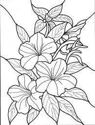 Small Picture Coloring Pages For Adults Hawaiian Flowers Coloring Pages Fresh On