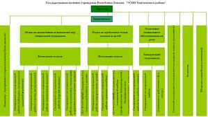 ОРГАНИЗАЦИЯ РАБОТЫ ТЕРРИТОРИАЛЬНЫХ ОРГАНОВ СОЦИАЛЬНОЙ ЗАЩИТЫ НАСЕЛЕНИЯ Рисунок 1 1 Структура Управления социальной поддержки населения Таштыпского района
