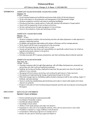 Assistant Manager Job Description For Resume Assistant Sales Manager Resume Samples Velvet Jobs 32
