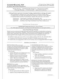 resume samples  amp  examples brightside resumesmanagment resume sample  sandeep rajani sr  project manager