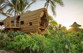 luxurious tree house hotel. Luxury Tree Houses And Mexico Go Hand-in-hand At Playa Viva. Luxurious House Hotel