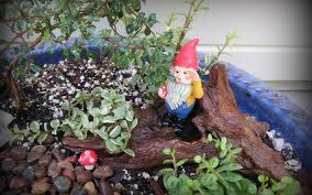 gnome garden the houseplant guru