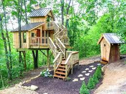 outdoor cat tree house diy