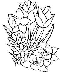 Rose Flower Coloring Pages Flower Coloring Page More A Rose Coloring
