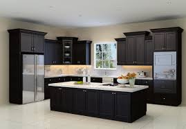 Espresso Shaker Cabinets Cabinet Style Dallas Kitchen Bathroom Cabinets