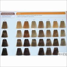 Redken To Joico Conversion Chart 16 Interpretive Redken Hair Toner Color Chart