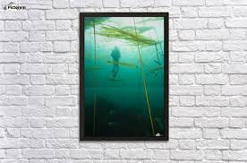 browning passage scuba diving northern vancouver island british columbia canada wall decor