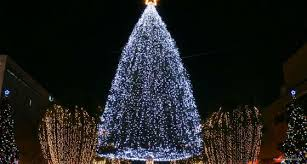 christmas tree lighting ideas. Christmas Tree Lighting Ideas E