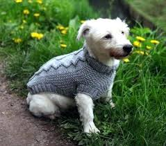 Free Knitted Dog Sweater Patterns Cool Crochet Dog Sweater Wear Chihuahua Puppies Sweaters Coats Pet