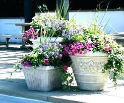 how big lots flower pots kitchenaid mixer large outdoor plant planters phoenix best ideas on no