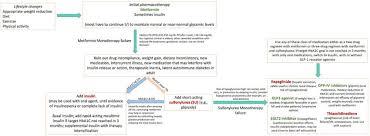 Flow Chart Depicting An Algorithm For Use Of Drug Regimen In
