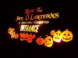 avoiding regret photo essay rise of the jack o lanterns photo essay rise of the jack o lanterns