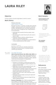 Finance Director Resume samples