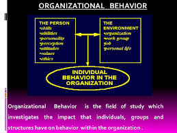 importance of organizational behaviour organizational behavior<br