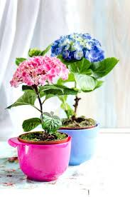 hydrangea arrangements plyful hydrnge rrngement silk centerpiece flowers for weddings diy