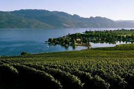Just a short drive from west harbour, these six wineries are the perfect places to relax, indulge, and enjoy the okanagan valley. West Kelowna Wine Tour Classic 4 Wineries 2021 Kelowna Okanagan Valley
