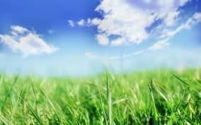 grass and sky backgrounds.  And HD Wallpaper  Background Image ID4473 1600x1200 Earth Grass And Sky Backgrounds O