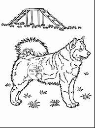Mama And Baby Animal Coloring Pages Best Of Coloring Pages Animals