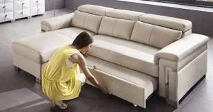 a sofa and a sofa bed