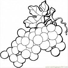 Small Picture Grape 4 Coloring Page Free Grapes Coloring Pages