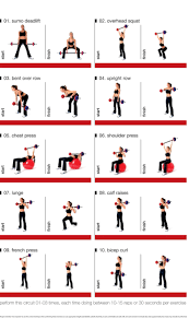 Barbell Circuit For Exercising At Home Home Strength