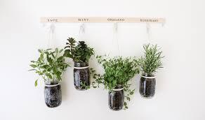 spring diy hanging mason jar herb