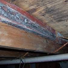 shelby mt repair wood damage in montana