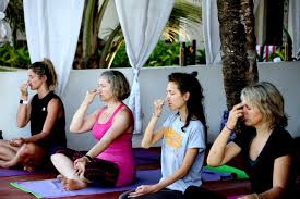 200 hrs holistic hatha and ashtanga vinyasa flow yoga teacher goa india
