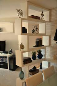 wandregal als raumtrenner (Diy Shelves)