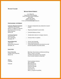Latest Resume Format Pdf Cv South Africa Amazing Free Resume