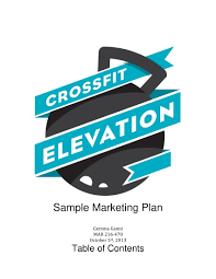 9+ Marketing Action Plan Examples - Pdf