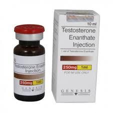 order testosterone enant 10ml 250mg