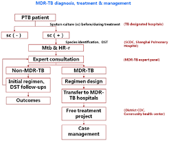Flow Chart Of Diagnosis And Treatment Mdr Tb Multidrug