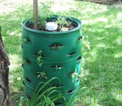 barrel garden. DIY 55 Gallon Drum Garden | Projects Using Barrel