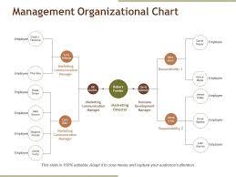 Management Organizational Chart Ppt Samples Graphics