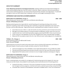 Summary Examples For Resume Resume Executive Summary Sample Fungramco 85