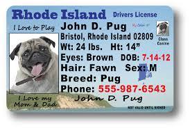 License Rhode Island Rhode Island Drivers