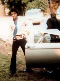 Elvis Presley  53 álbumes De La Discografia En LETRASCOMElvis Clean Up Your Own Backyard