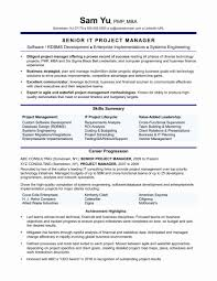 Senior Project Manager Resume Pdf Unique Technical It Projecter