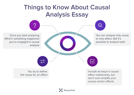 how to write a causal analysis essay essayhub  things to know about causal analysis essay