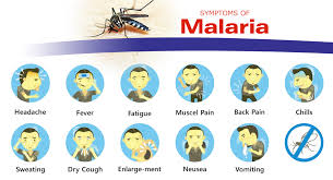 Image result for malaria symptoms picture