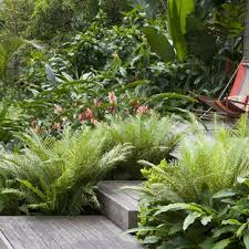 75 Beautiful Tropical Landscaping Pictures Ideas March 2021 Houzz