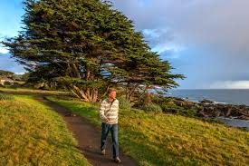 Things To Do Explore And Experience At The Sea Ranch