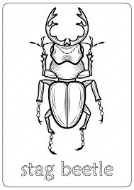 Print spiderman coloring pages for free and color our spiderman coloring! Animals Stag Beetle Coloring Pages Book