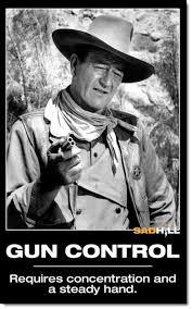 Gun Rights & Second Amendment Memes, Cartoons, & Graphics to Honor ... via Relatably.com
