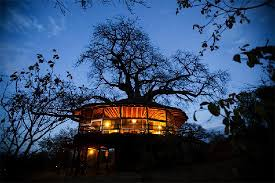 Worldu0027s Most Awesome Treehouse Hotels  TravefyTreehouse Hotel Africa