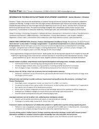 Leadership Skills Resume Phrases Example Samples Spacesheep Co