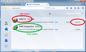 Firefox Style Download Manager Extensions for Chrome DownThemAll