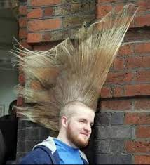 Image result for funny hair cut pics